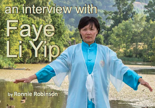 an interview with faye li yip